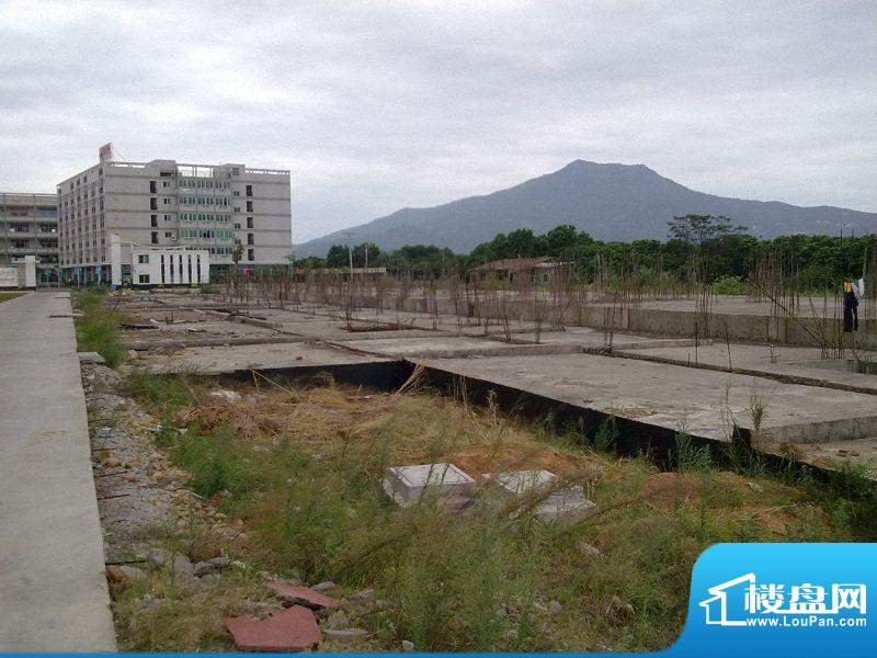 联丰水岸豪园二期工程进度(20101020)