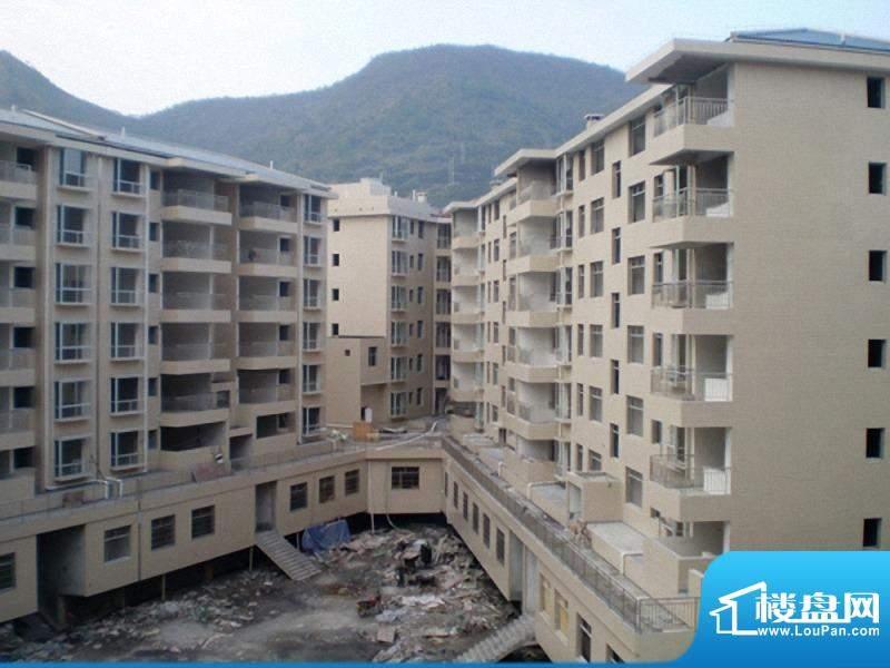 泉南国际新城小区实景图(20100925)