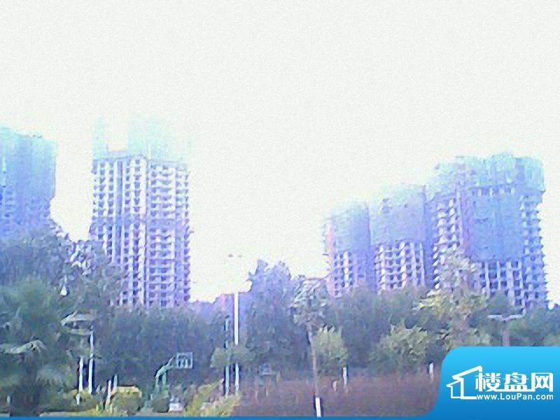 皇家滨城小区实景图(20100925)