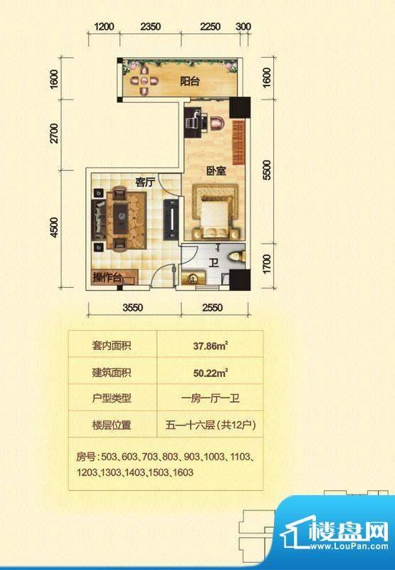 金泰龙步行街商厦5-面积:50.22平米