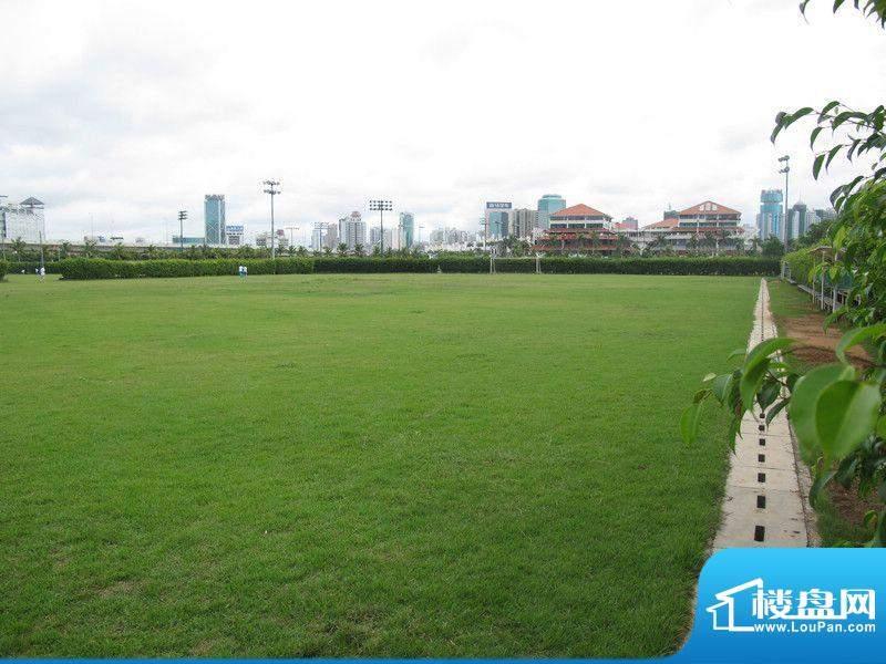 复兴城嘉宾国际远景实景图(20111205)