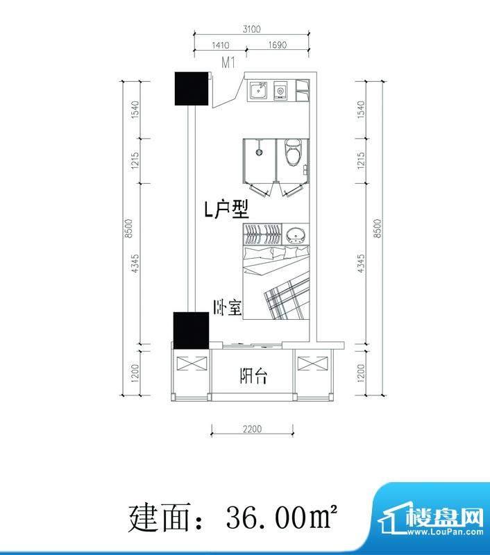 轻城阳光L户型 1室1面积:36.00平米
