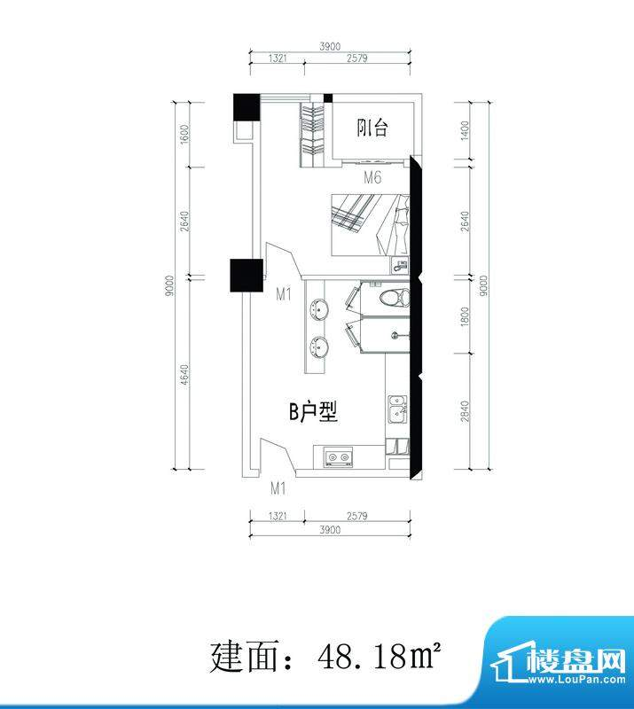 轻城阳光B户型 1室1面积:48.18平米