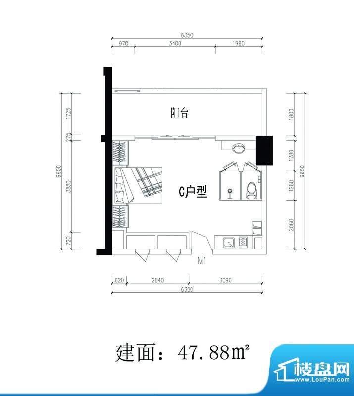 轻城阳光C户型 1室1面积:47.88平米