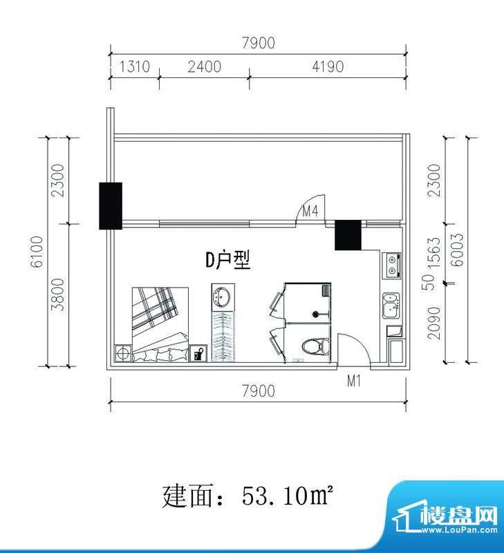 轻城阳光D户型 1室1面积:53.10平米