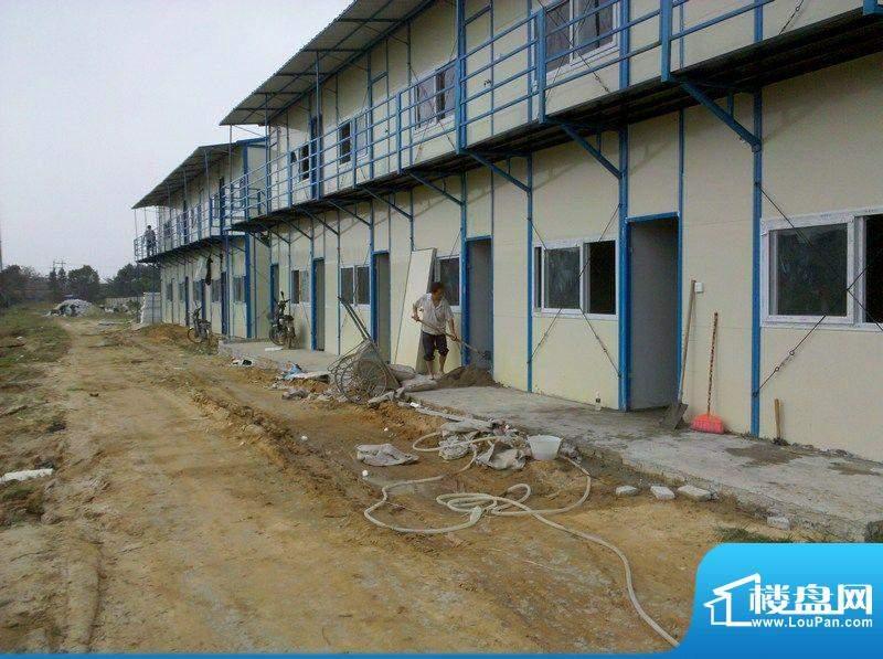 弗拉明戈屿海工程进度实景图(20111120