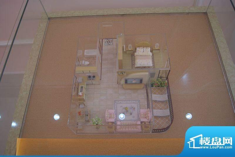海岸豪庭户型模型实景图(20111121)