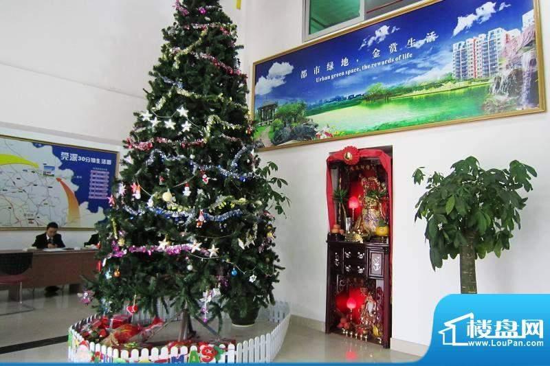 金田花园花域销售中心实景图(2012-1-1