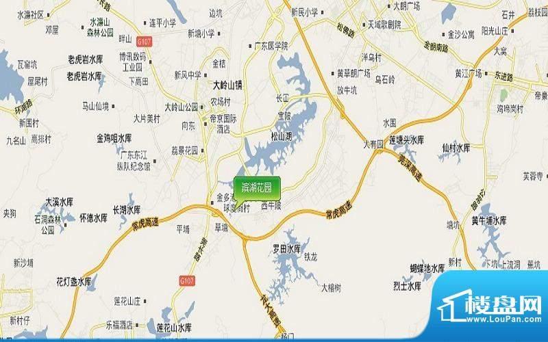 滨湖花园项目交通图