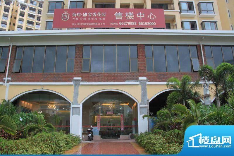 海岸郁金香花园售楼中心实景(2011-7-1