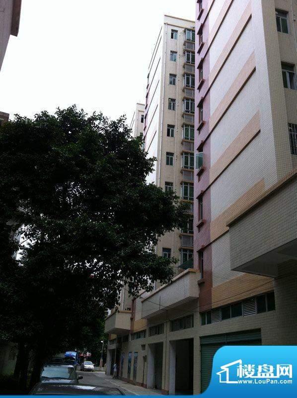 西广场12号外景图(2012-6)