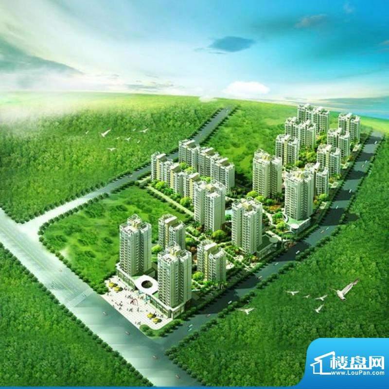 东海椰苑鸟瞰图