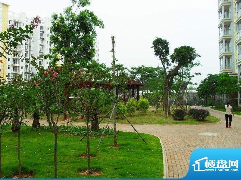 东海椰苑小区1期园林实景(20100901)