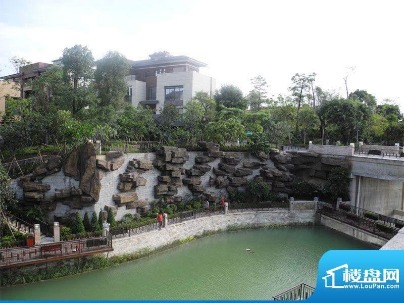 广州星河丹堤实景图2012.7.15