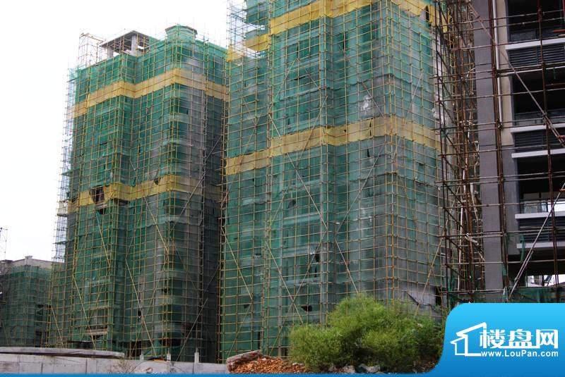 西岭华庭小区工程实景图(20101111)