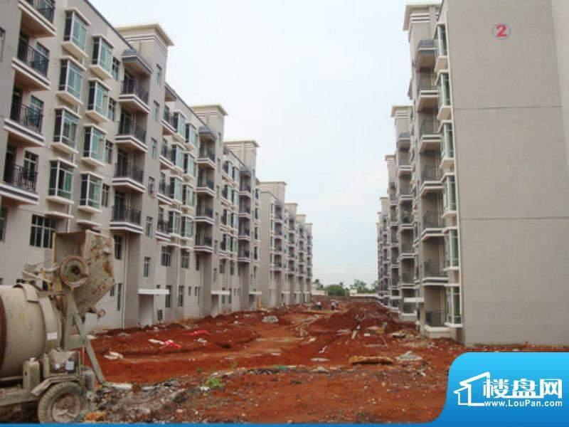 大拉长寿谷二号楼工程进度(20100808)