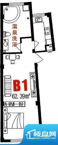 三缘温泉花园B1户型面积:62.39平米