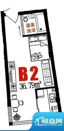 三缘温泉花园B2户型面积:36.79平米