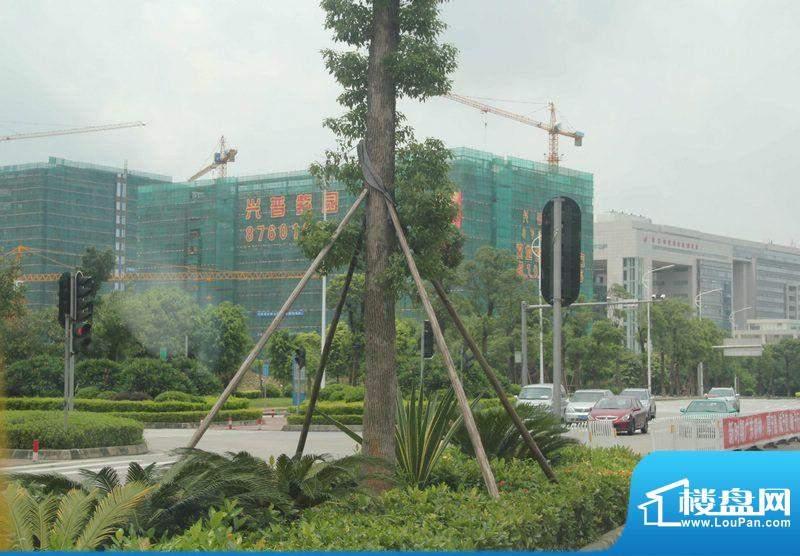 兴普紫园国际实景图