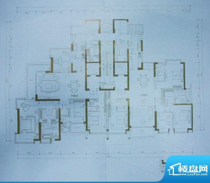 保利天悦15栋标准户面积:0.00平米