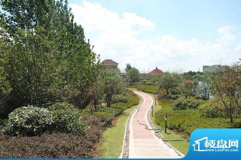 红鼎湾花园实景图