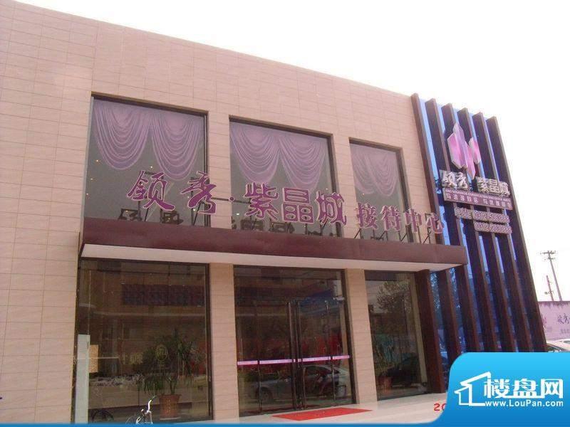 领秀紫晶城实景图
