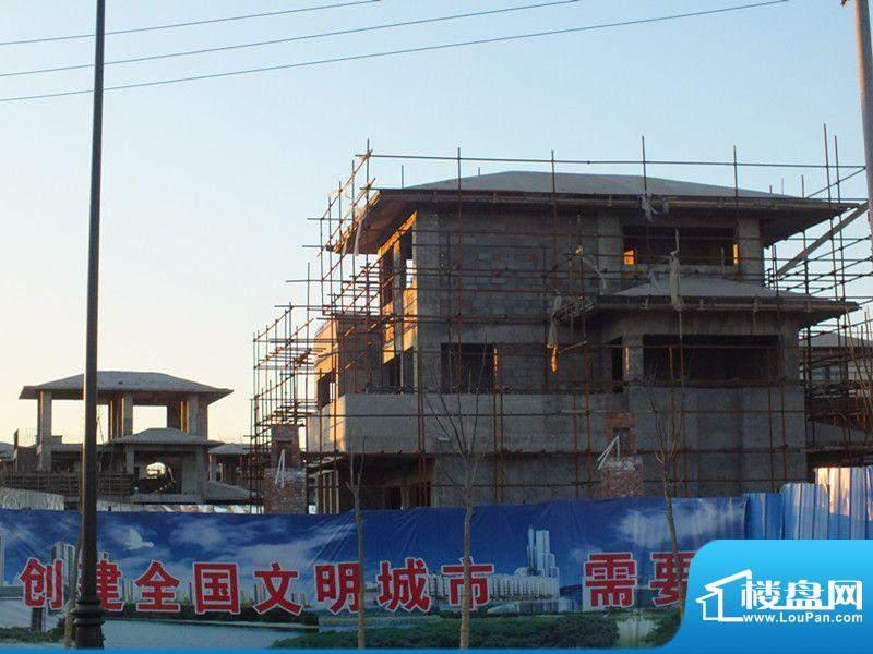 证大·紫金府实景图(2012-01)
