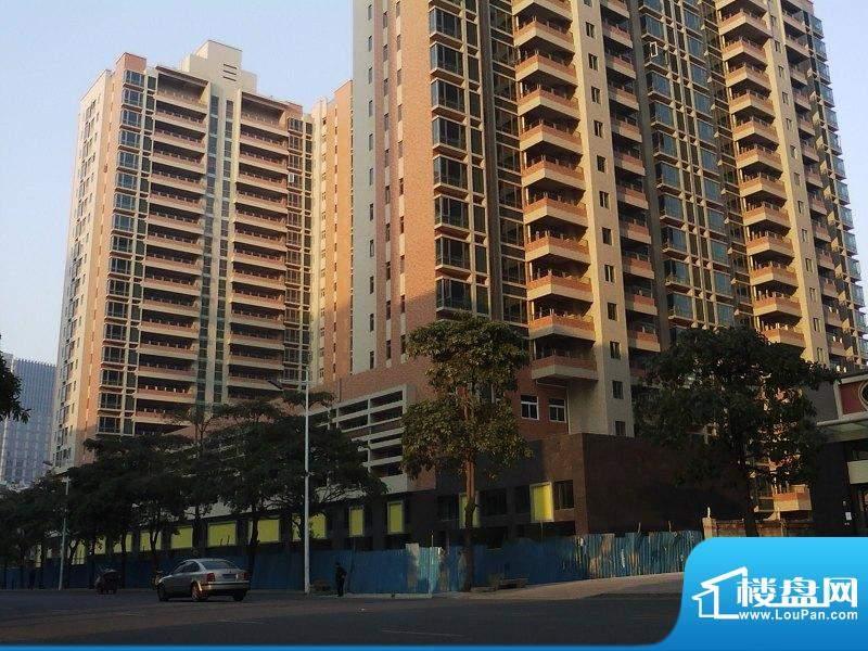 达鑫龙庭1-3栋北面外景图(2010-12-23)