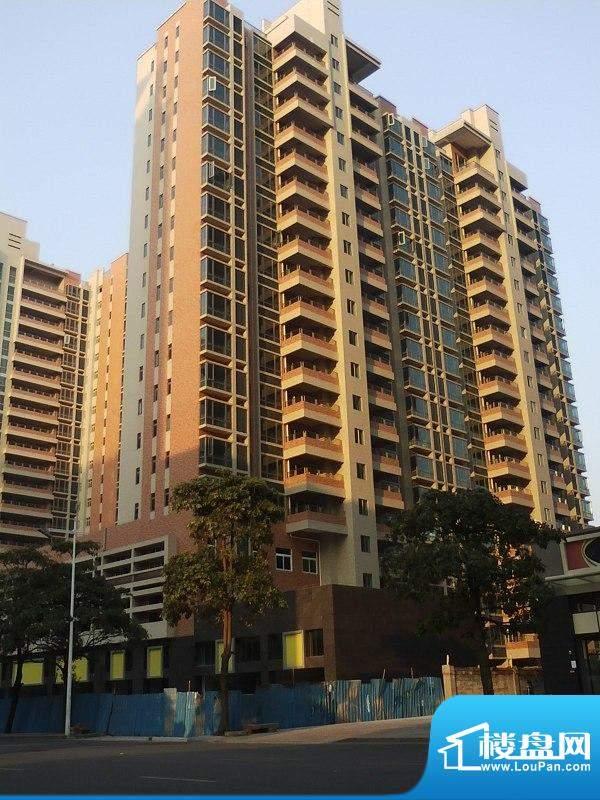 达鑫龙庭3栋北面外景图(2010-12-23)