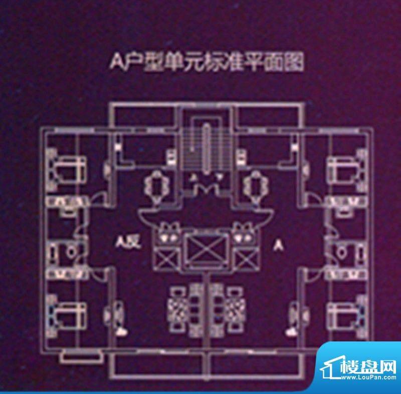 时代国际广场A户型单面积:111.81m平米