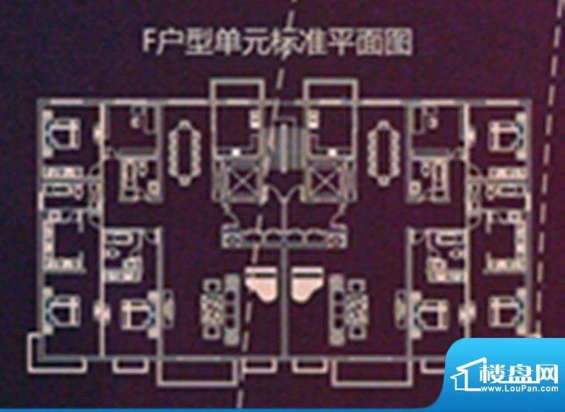 时代国际广场F户型单面积:235.32m平米