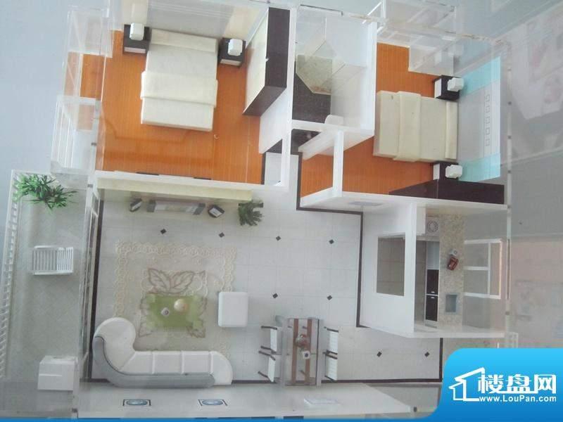 盛泰花园两房户型模型实景图(20101209
