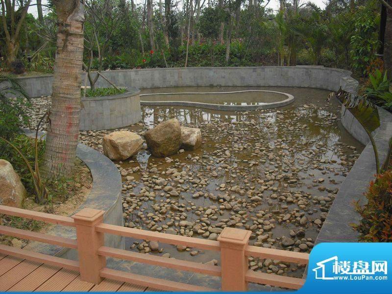 翡翠水城小区园林实景图(20110320)