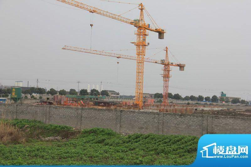 绿地新都会施工现场实景图(2012-3-20)