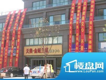 天奥金域兰庭实景图(2010-10-11)