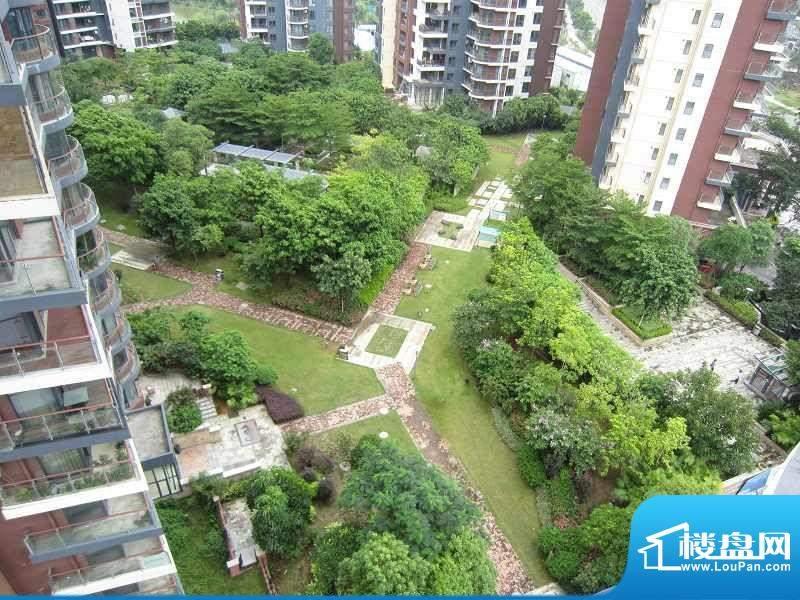 长城世家二期小区园林实景图(2011-7-2