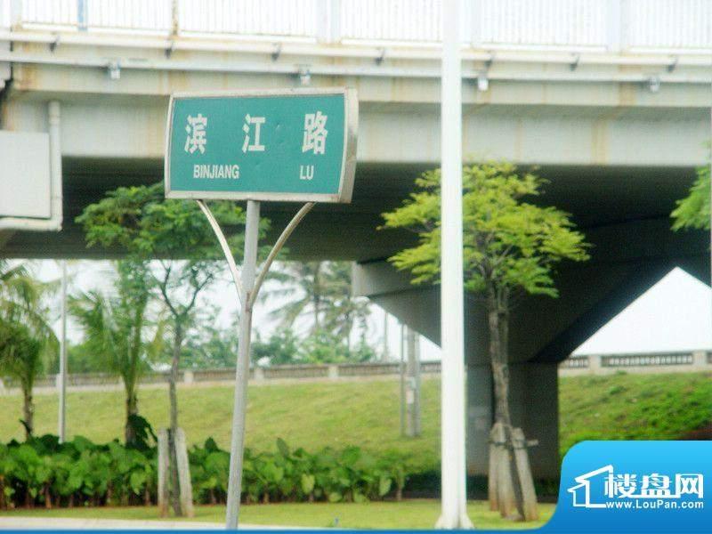 滨江星座实景图