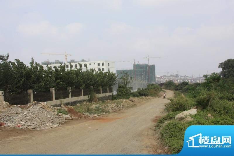 德信滨江绿都周边 市政规划即将新建道路