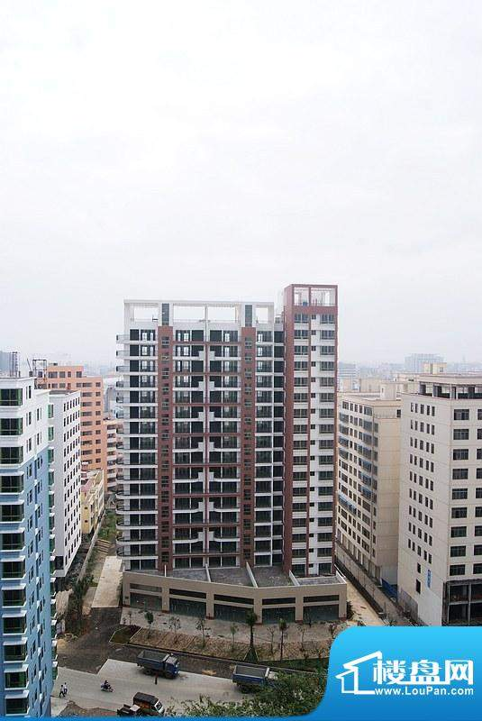 春华公寓小区实景(20110224)