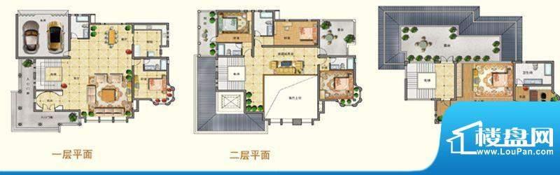 将军一品E户型 5室3面积:619.00m平米