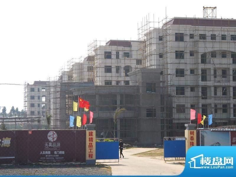 泰隆·天宝福地外景图(2010-12-18)