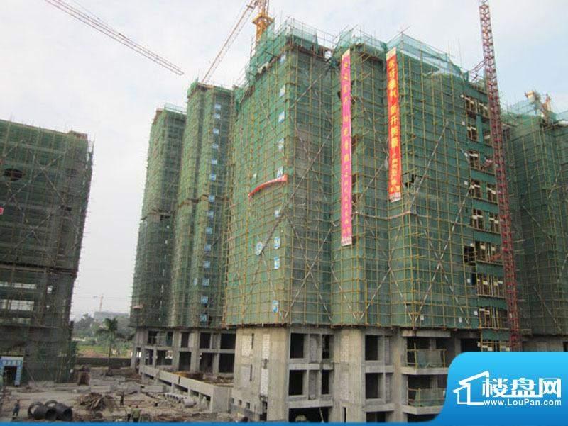 中安·止泊园项目工程外景图(2010-09-