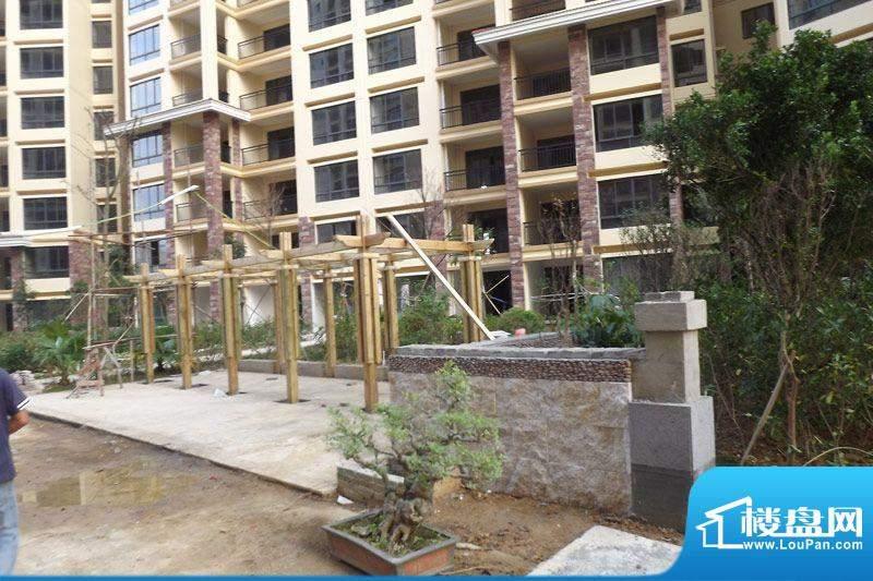 海枫和苑园林施工实景图20111122