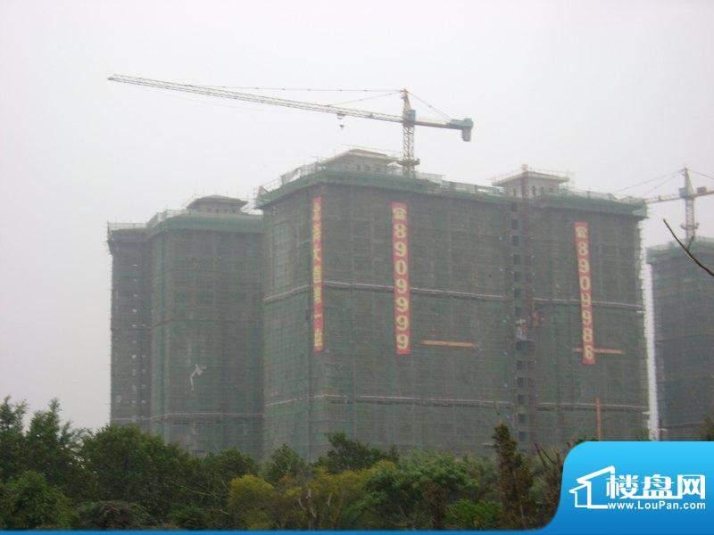 海枫和苑项目工程远景图(2011-02-22)