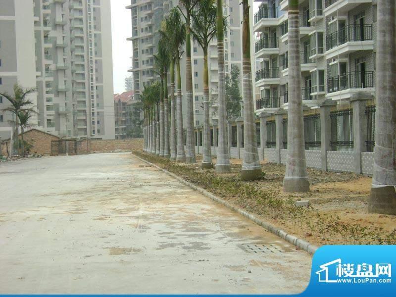 银滩融鑫苑1-2号楼背面实景20110127