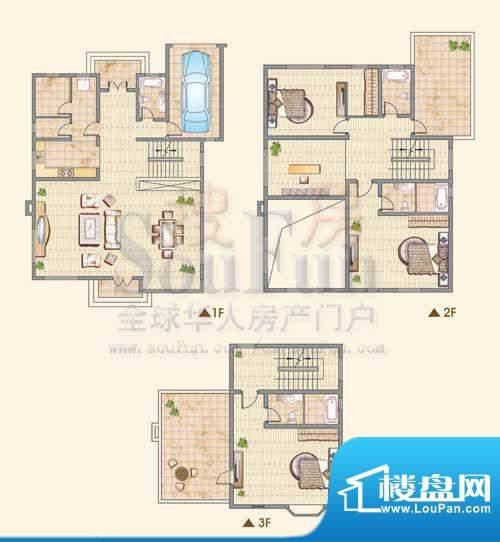 龙城福第A户型 3室3面积:305.00平米