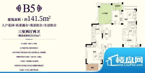 金科东方王府B5户型面积:141.50平米