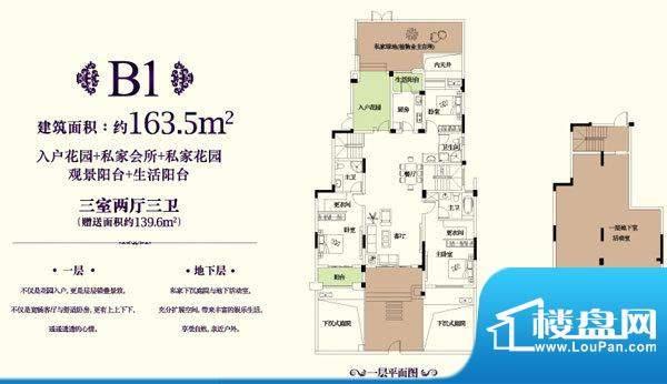 金科东方王府B1户型面积:163.50平米
