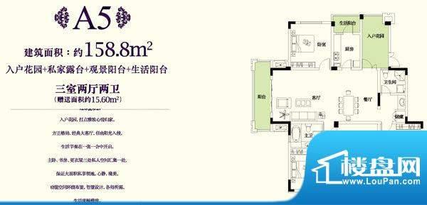 金科东方王府A5户型面积:158.80平米