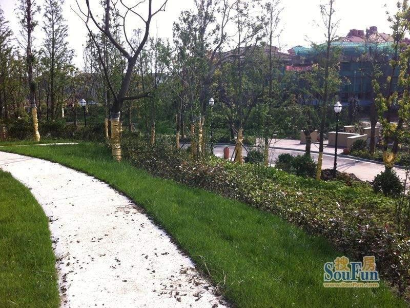 崇德馥园景观实景(20120517)